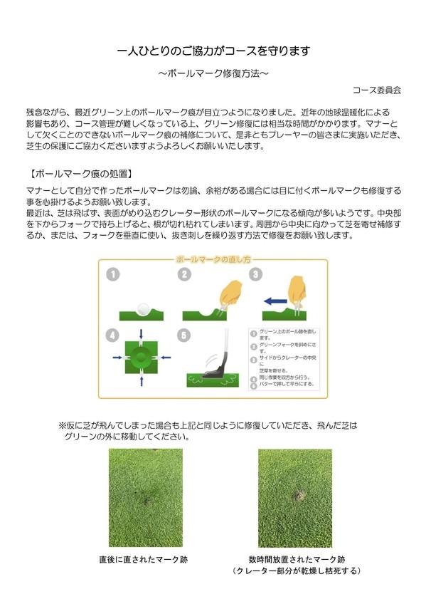 green_repairing210905 (2).jpg